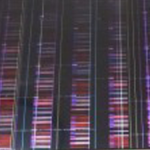 ノイズ画面-2